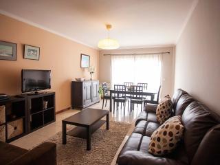 Apartamento Santos Graça - Povoa de Varzim vacation rentals