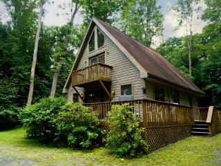 Wind in the Willows-Lake Access! - Oakland vacation rentals