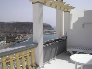 Dazzling Seaview Apartment (PDC-5) - Playa de Cura vacation rentals