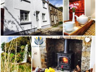 Nant Melyn Cottage - Brynamman vacation rentals