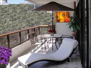 EXCELLENT VIEW & FARE RECOLETA-DOWNTOWN 3/4 BDRS - Buenos Aires vacation rentals