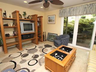 Cozy 3 bedroom House in Hilton Head - Hilton Head vacation rentals