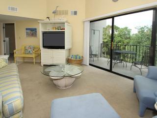 Forest Beach Villas, 423 - Hilton Head vacation rentals