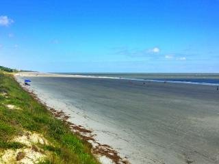 Island Charm - Hilton Head vacation rentals