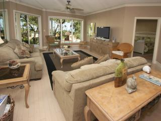 Windsor Place, 207 - Hilton Head vacation rentals