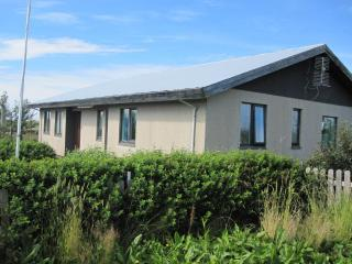Perfect House with Microwave and Washing Machine - Hvolsvollur vacation rentals
