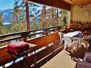 Beautiful 2 Bedroom 2 Bath Ski-in Ski-out Condo - Listing #257 - Mammoth Lakes vacation rentals