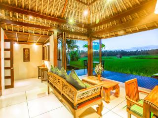 Amazing RiceField Views Villa Asmara ONLY $99! - Ubud vacation rentals