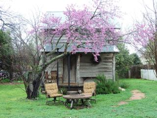 1 bedroom House with Satellite Or Cable TV in Fredericksburg - Fredericksburg vacation rentals