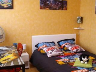 1 bedroom House with Television in Lille - Lille vacation rentals