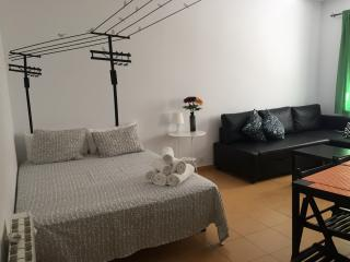 Home Rentals Madrid Center 3-5 AC&WIFI - Madrid vacation rentals
