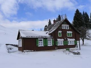 Beautiful 4 bedroom Krummenau House with Internet Access - Krummenau vacation rentals