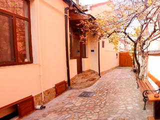 Romantic 1 bedroom Villa in Timisoara with Internet Access - Timisoara vacation rentals