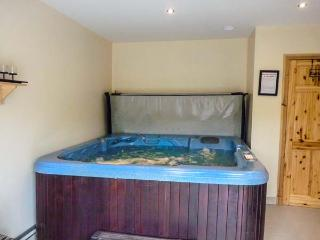 UPPERCHURCH, spa room with hot tub and sauna, scenic views, WiFi, Thurles, Ref 931453 - Thurles vacation rentals