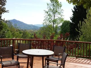 FAMILY & FRIENDS MOUNTAIN GETAWAY - Sevierville vacation rentals