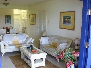 Perfect Condo with Internet Access and Washing Machine - Lowlands vacation rentals