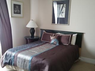 Downtown Atlanta luxury condo with stunning views - Atlanta vacation rentals