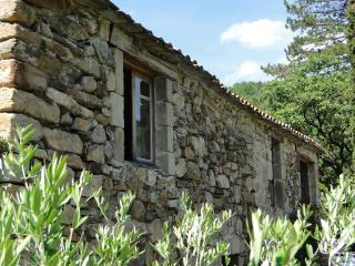 2 bedroom Gite with Internet Access in Ceilhes-et-Rocozels - Ceilhes-et-Rocozels vacation rentals