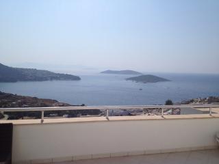 Stunning Seaview Penthouse for 4 (CDN3) - Yalikavak vacation rentals