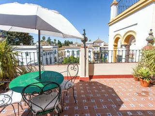 APARTMENTSOLE-SANTA CRUZ PRIVATE TERRACE - Seville vacation rentals