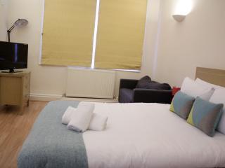 Beautiful & Modern City Flat AC3b - London vacation rentals