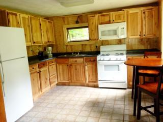 1 bedroom Cottage with Corporate Bookings Allowed in Hinckley - Hinckley vacation rentals