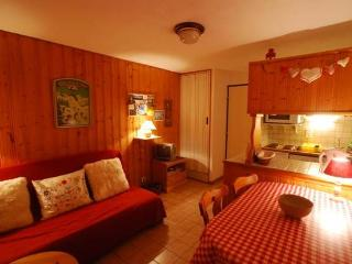 Superb studio ground floor apartment in village - Les Contamines-Montjoie vacation rentals