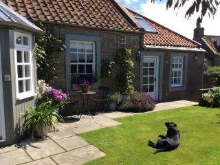 Westbourne Cottage near St Andrews Fife Scotland - Anstruther vacation rentals
