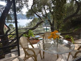 Villa Thekli, family home - Paleokastritsa vacation rentals