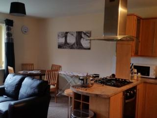 Comfortable 2 bedroom Condo in Wolverhampton - Wolverhampton vacation rentals