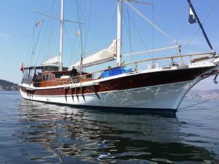 Croisière groupe 22 pax sur les Iles Grecques - Kos Town vacation rentals