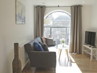 Beautiful & Modern City Flat SV1 - London vacation rentals