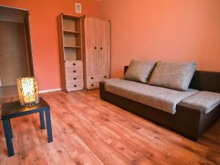 1 bedroom Private room with Housekeeping Included in Vilnius - Vilnius vacation rentals