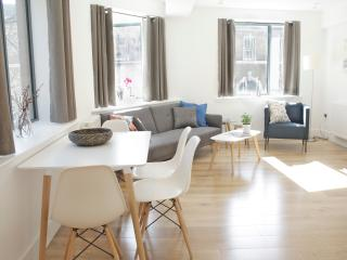 Beautiful & Modern City Flat SV2 - London vacation rentals