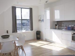 Beautiful & Modern City Flat SVP - London vacation rentals
