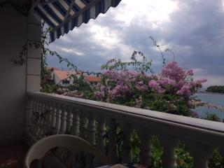 Lovely apartment in private villa - Maslinica vacation rentals