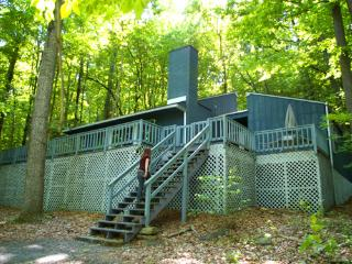 Perfect House with Internet Access and Wireless Internet - Berkeley Springs vacation rentals