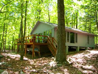 Perfect Berkeley Springs vacation House with Television - Berkeley Springs vacation rentals