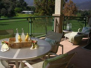 Welk Resort, near San Diego CA - Pacific Beach vacation rentals