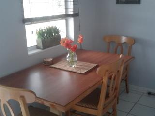 Nice Condo with Internet Access and A/C - Saint Pete Beach vacation rentals