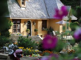 Beautiful House with Internet Access and Satellite Or Cable TV - Salt Spring Island vacation rentals