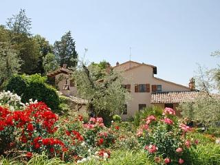 Villa Elciarelli, surrounded by Olive Trees -Pool - Baschi vacation rentals
