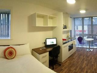 Luton: Your Premium Modern Bright Studio | F23 - Luton vacation rentals
