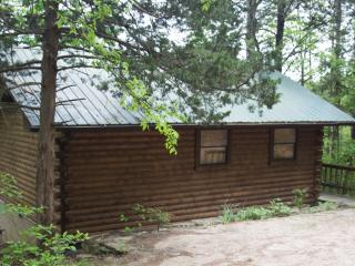 Enchanted Forest: Deluxe Mountain Top Cabin 2 - Eureka Springs vacation rentals