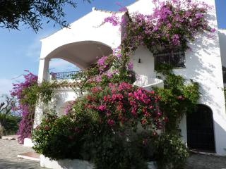 villa avec piscine devant  le phare de Trafalgar - Los Canos de Meca vacation rentals
