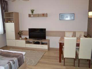 Cozy 2 bedroom Apartment in Debrecen with Wireless Internet - Debrecen vacation rentals