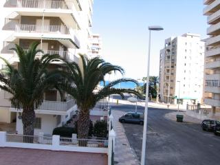 Nice Condo with Shared Outdoor Pool and Children's Pool - Cullera vacation rentals