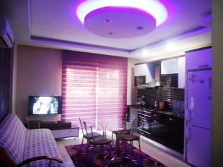 Bright 2 bedroom Antalya Condo with A/C - Antalya vacation rentals
