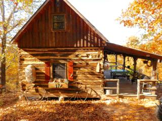 Scenic Ozark Cabin in the Woods - Dixon vacation rentals