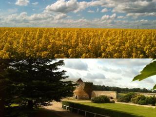 Résidences du CLOS DU MANOIR Cottage FLEUR DE LIN - Gauciel vacation rentals